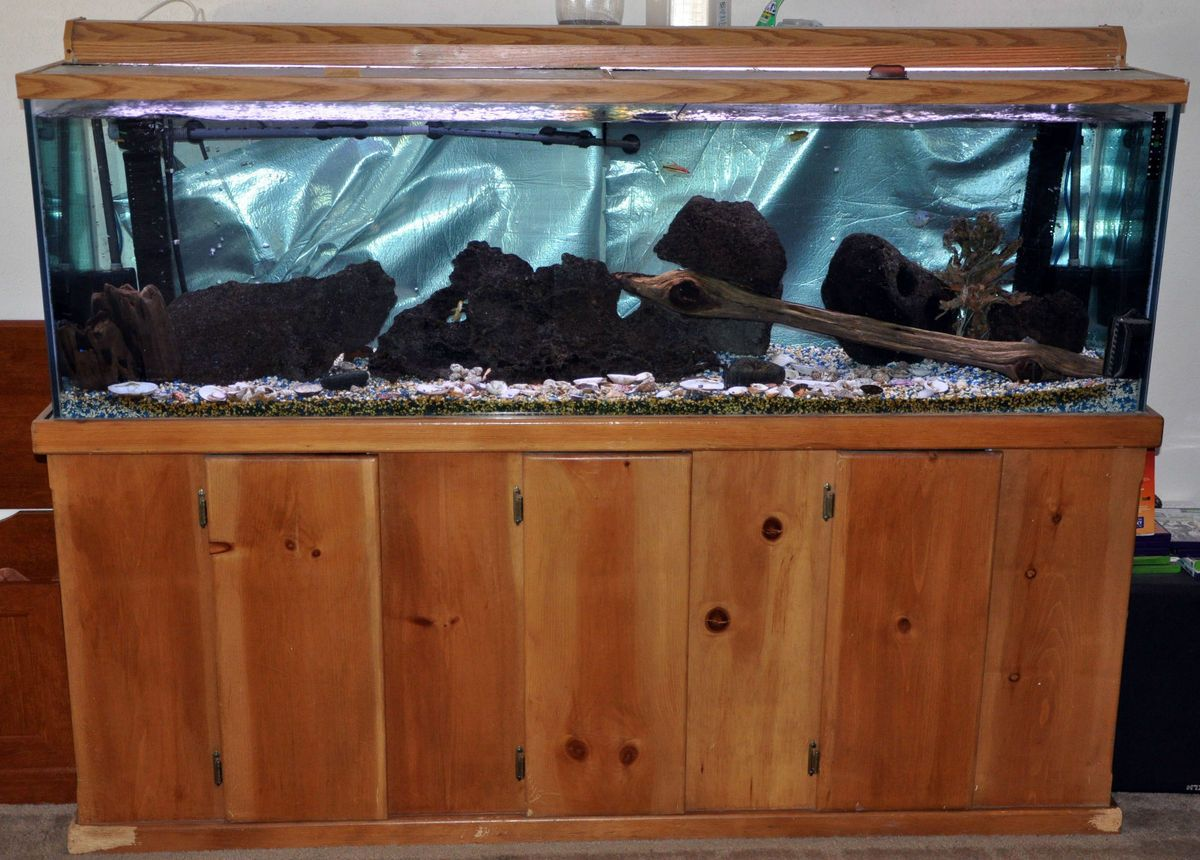 125 gallon glass fish tank and stand for 125 gallon fish tank stand